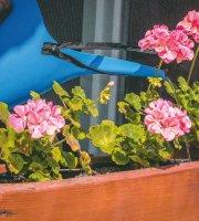 Öntapadós szúnyogháló cipzáros nyílással 150 x 180 cm fekete